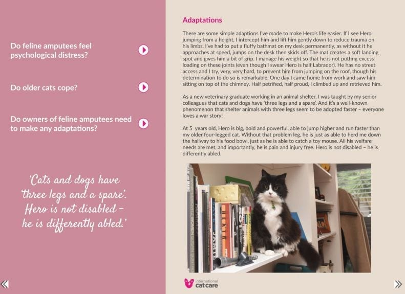 International Cat Care September article on Three Legs and a
